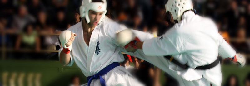 kyokushin karate open cat